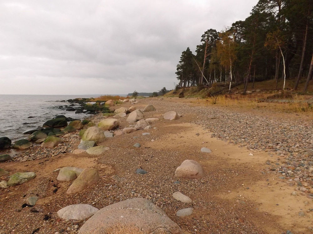 ACTIVE TOURS / LATVIA / HIKING IN ROCKY BEACHES OF VIDZEMES