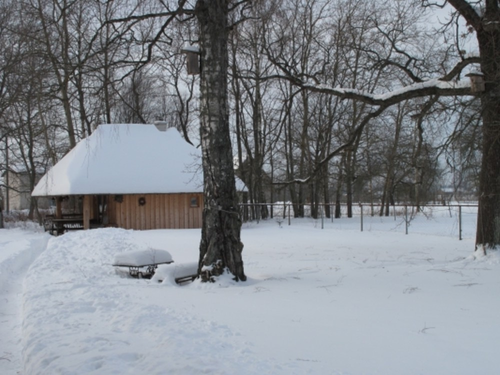 ACTIVE TOURS / LATVIA / HORSE SLEDGE AND TRADITIONAL LATVIAN SAUNA