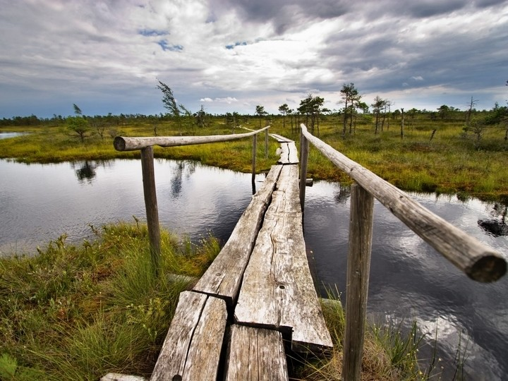 ONE DAY TOUR / LATVIA / KEMERI NATIONAL PARK