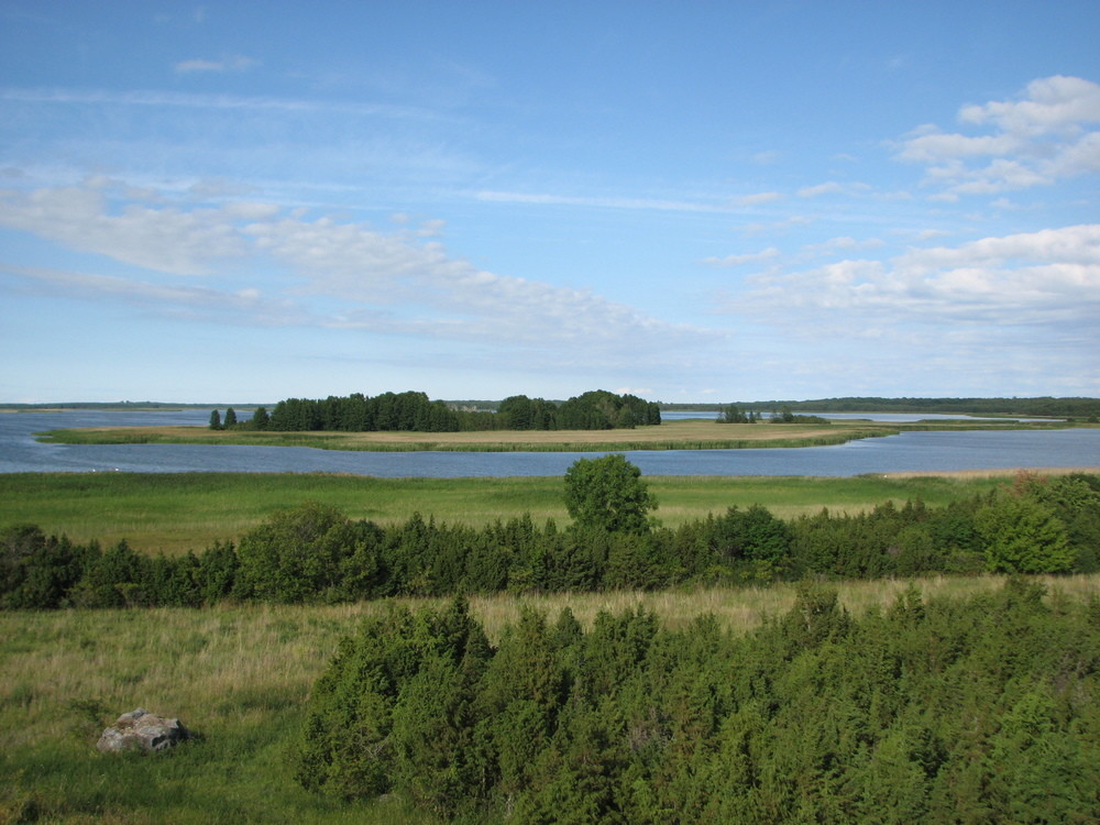 MULTI-DAY / ESTONIA / WILDLIFE IN ESTONIA