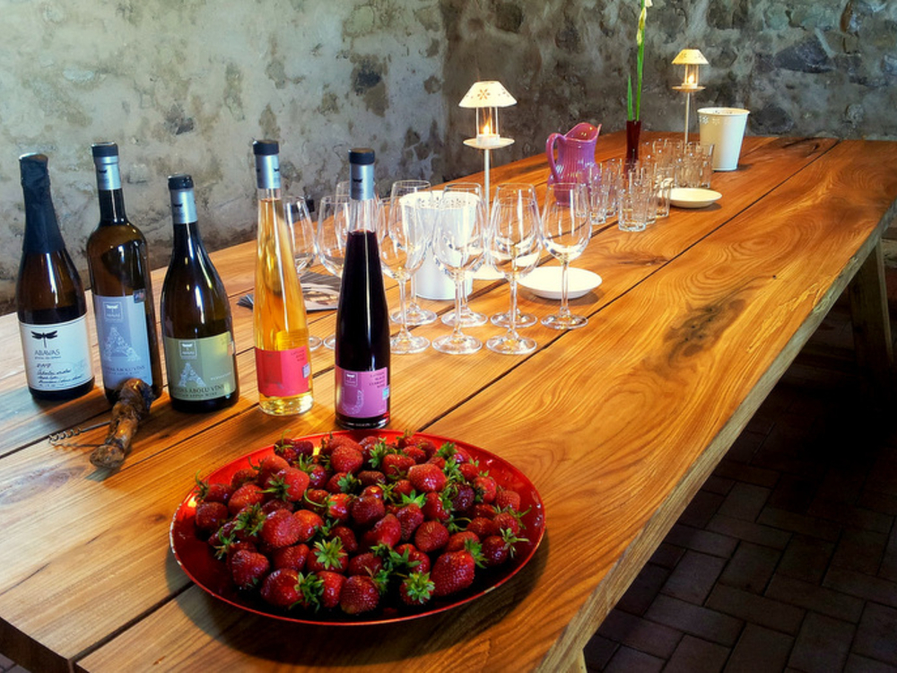 TASTE TOUR  / LATVIA / ABAVAS WINERY